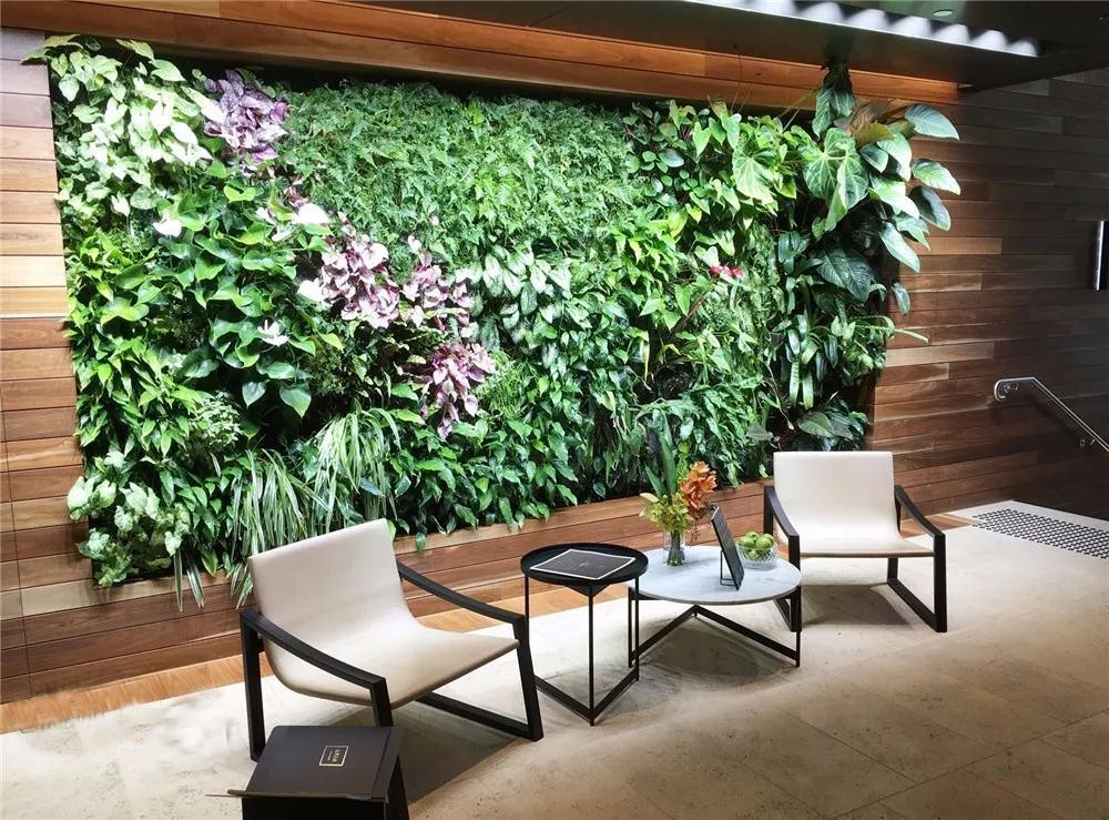 植物墙蓄排水结构的应用