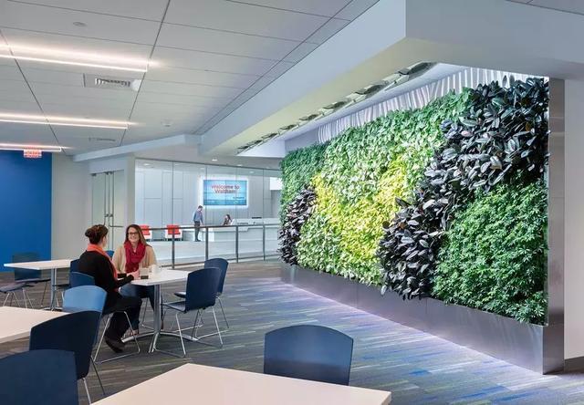 办公室装修-16款绿植墙给你的办公室增添春天感~
