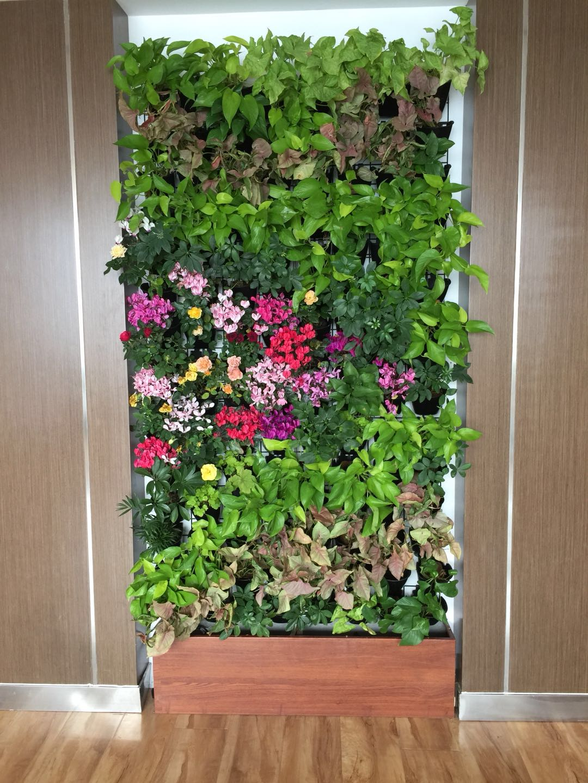 济南创新谷办公室绿植墙