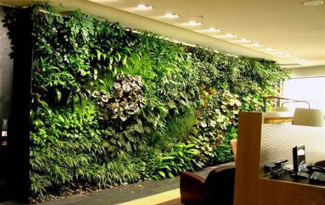 壁画式植物墙之美,不逊于国画山水!