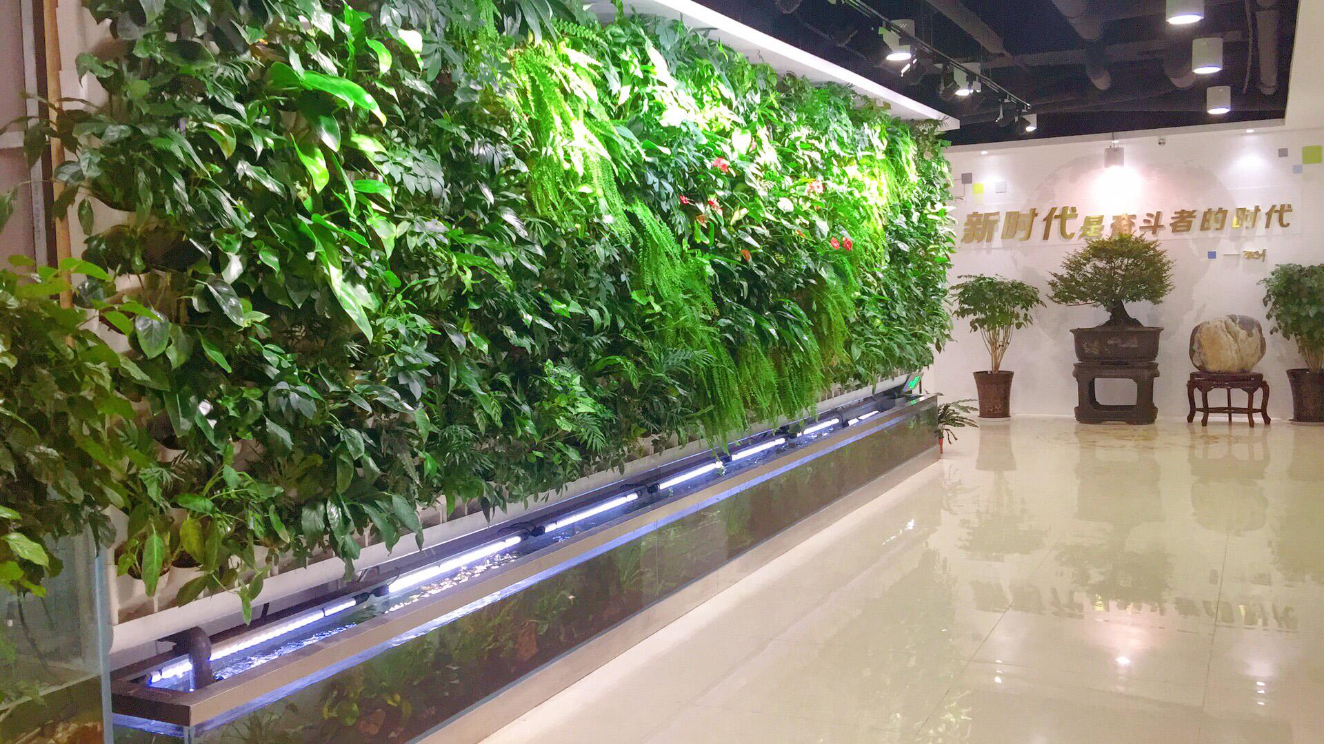细说垂直绿化 植物墙的各项作用和特点